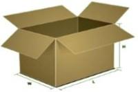Dimesional Recycling Shipment Box
